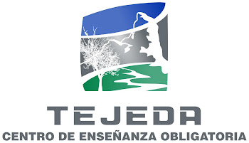 CEO Tejeda