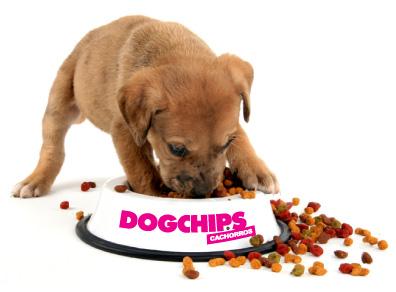 Veterinaria meda comida para perros - Comida para cachorros de un mes ...