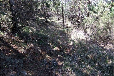 El sendero esta balizado con hitos de piedras