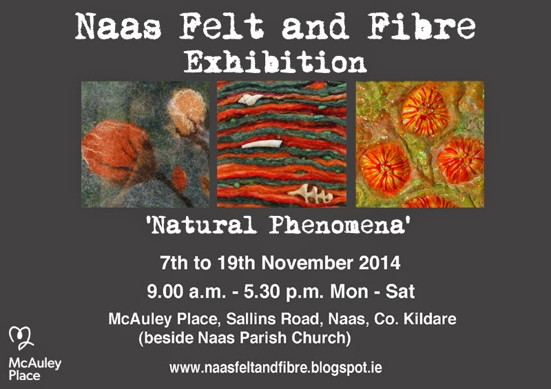 Naas Felt and Fibre Exhibition 'Natural Phenomena' at McAuley Place, Naas, Co. Kildare November 2014 feltmaking stitch work