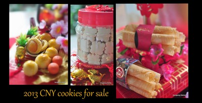 2013 CNY cookies for sale