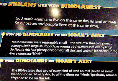 How did dinosaurs fit on Noah's ark?