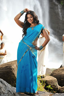 Anjali looks super cute sizzling in Blue and Green Saree Must See Smile SVSC Movie Pics