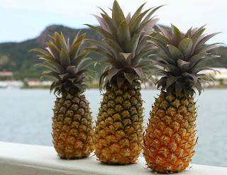 http://2.bp.blogspot.com/-XQqisxYH-kI/Utgi9RQby4I/AAAAAAAAAME/0cIvGUDEsiw/s1600/pineapples.jpg