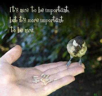 Sentimental+Quotes+on+Life.JPG