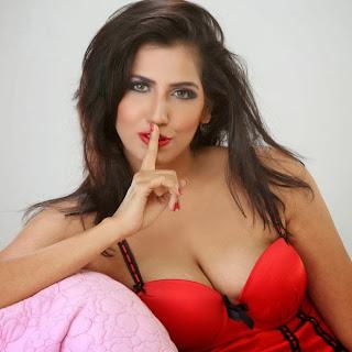 Lakshmi Iyer Hot Stills