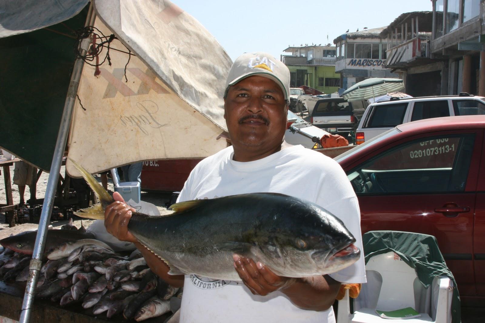 Dan 39 S Journal Rosarito Peir Fishing Report