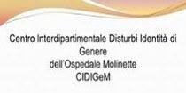 C.I.D.I.Ge.M. TORINO - Clicca logo per info