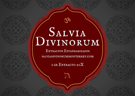 Extractos de Salvia Divinorum 20X