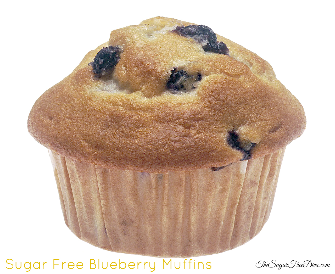 The Sugar Free Blueberry Muffin