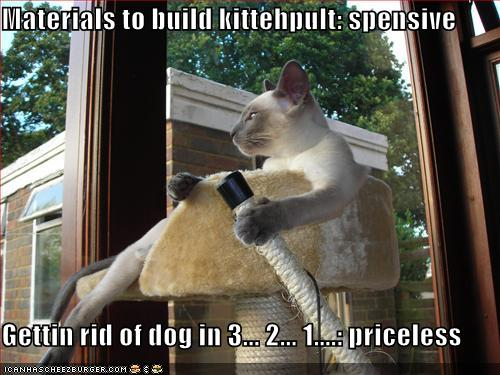 funny image collection inspirational dog quotes dog and