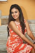 Actress Chandini glam pics-thumbnail-16