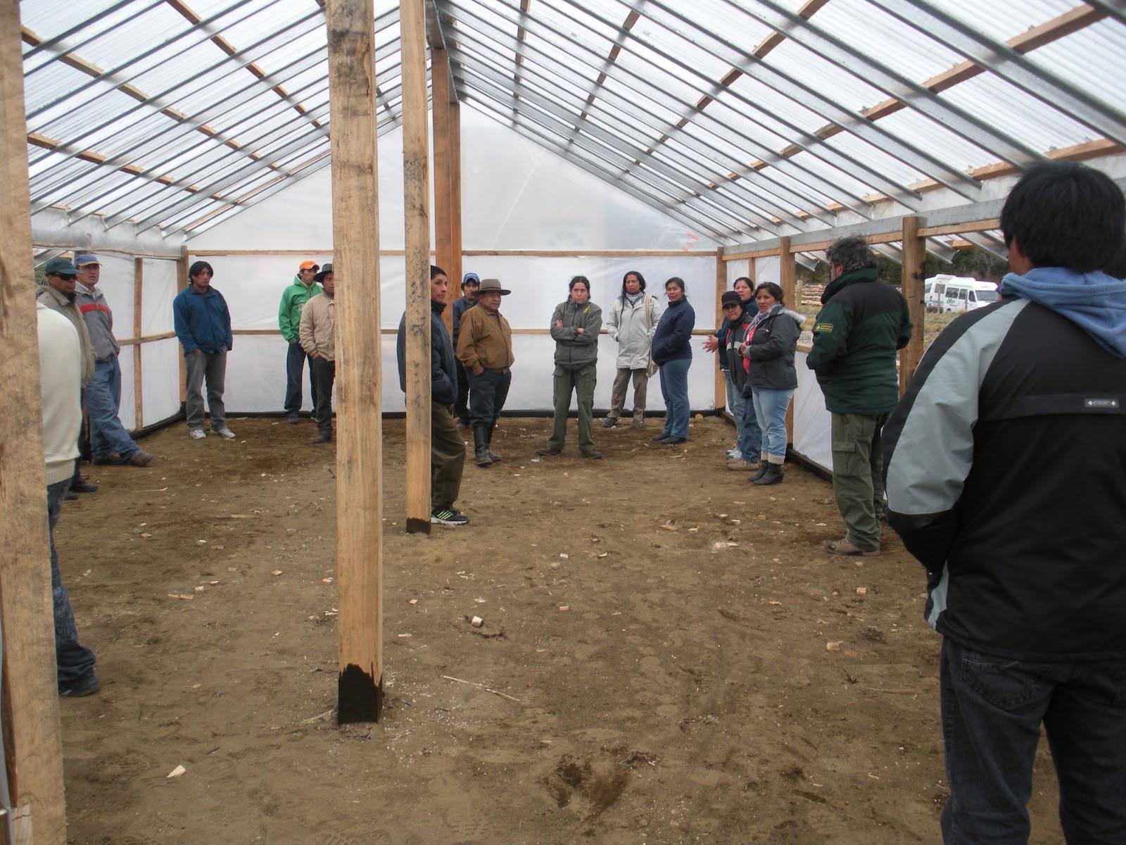 patagonia andina forestal jornadas de capacitaci n a la On proyecto de vivero forestal comunitario
