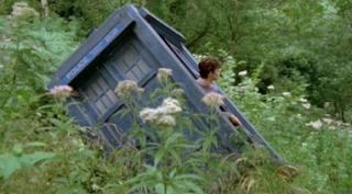 Drunken TARDIS