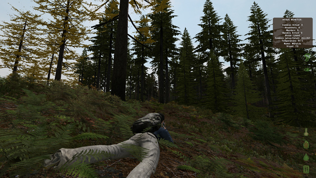 DayZ Experimental adds a shotgun and more