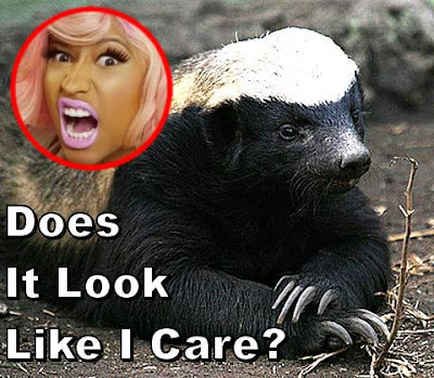 Nicki Minaj inset on a picture of Honey Badger, not caring
