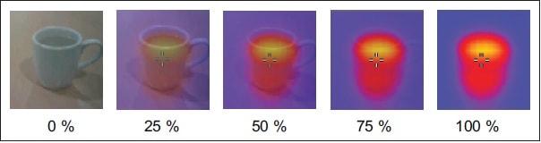 Fluke VT04 IR thermometer image blending
