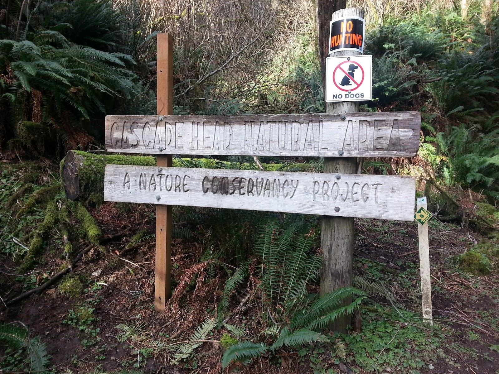 Cascade Head Natural Area Hiking Trail Lincoln City Oregon