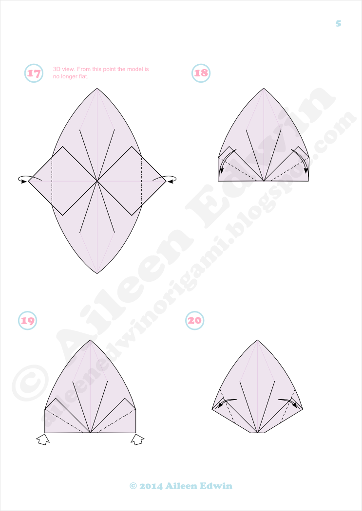 Origami Clam Shell Diagrams (Aileen Edwin)