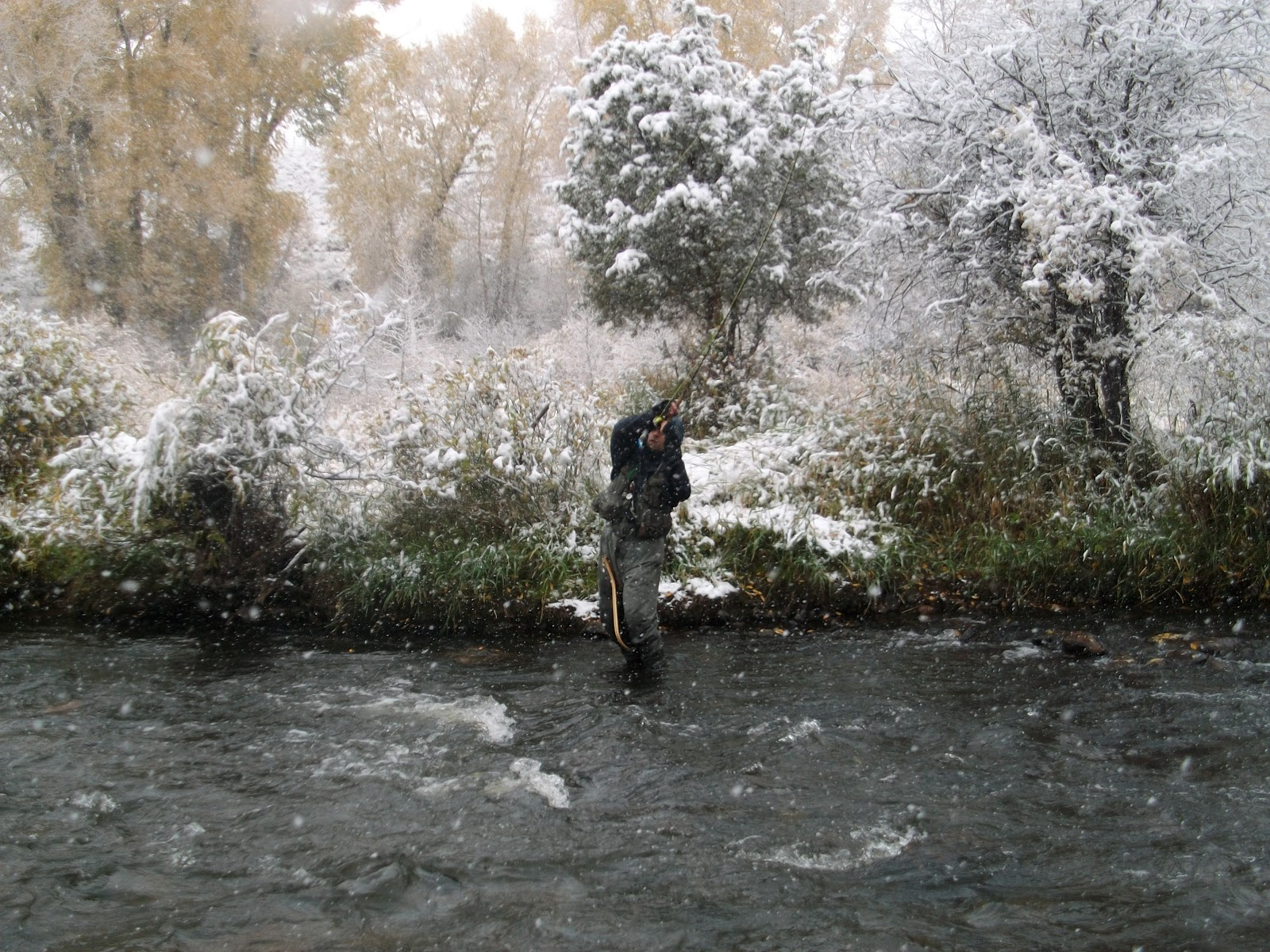 Fly Fishing Colorado's Front Range Rivers and Streams ...