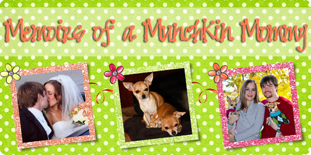 Memoirs of a Munchkin Mommy