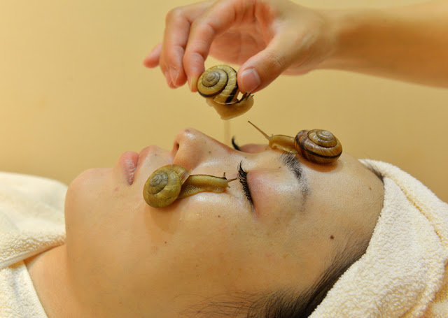 Live Snail Facial Treatment