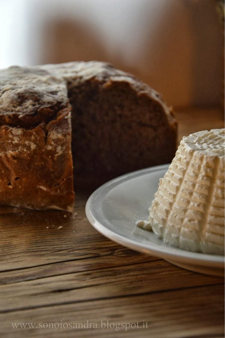 pane di farina di castagne e ricotta fatta in casa e un presidente povero