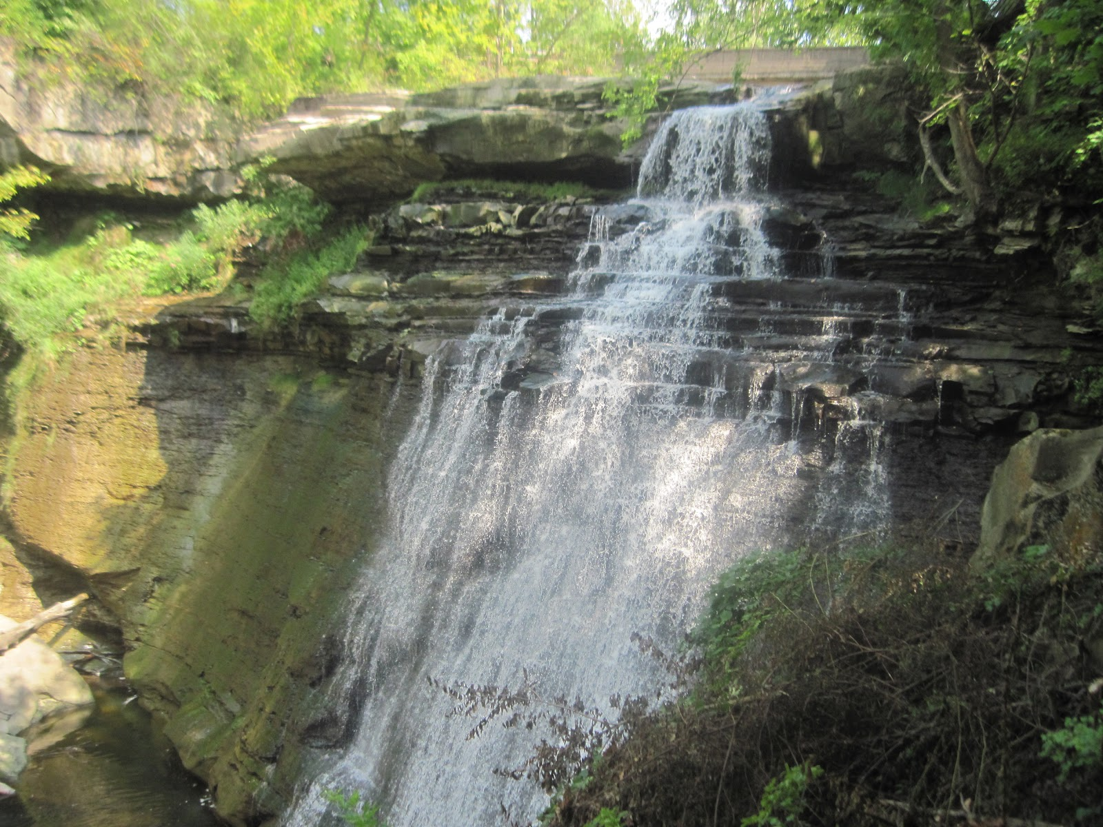 Despite being an urban park, Cuyahoga Valley National Park abounds in