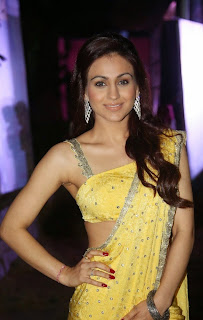 Actress Aksha Pardasany Latest Pictures in Yellow Saree at Dr Salim Audio Launch  15.jpg