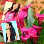 flor de calla