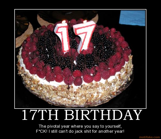 17th birthday quotes funny