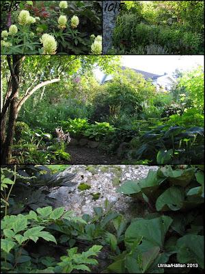 Planteringar/Giganten
