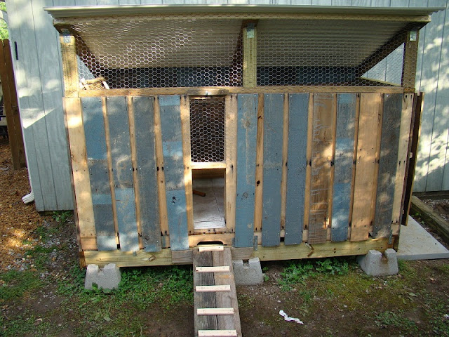 Redirecting for Pallet chicken coup