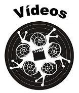 Canal de Vídeos en Vimeo