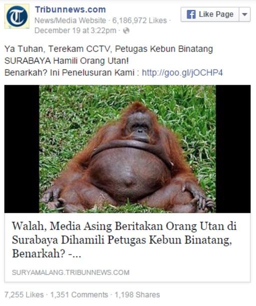 Apabila netizen percaya manusia 'hamilkan' orang utan