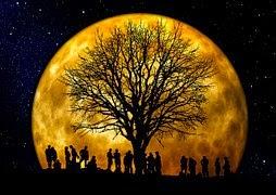 http://pixabay.com/en/tree-kahl-moon-human-group-66465/