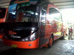 Express Pariwisata Bogor 59seat