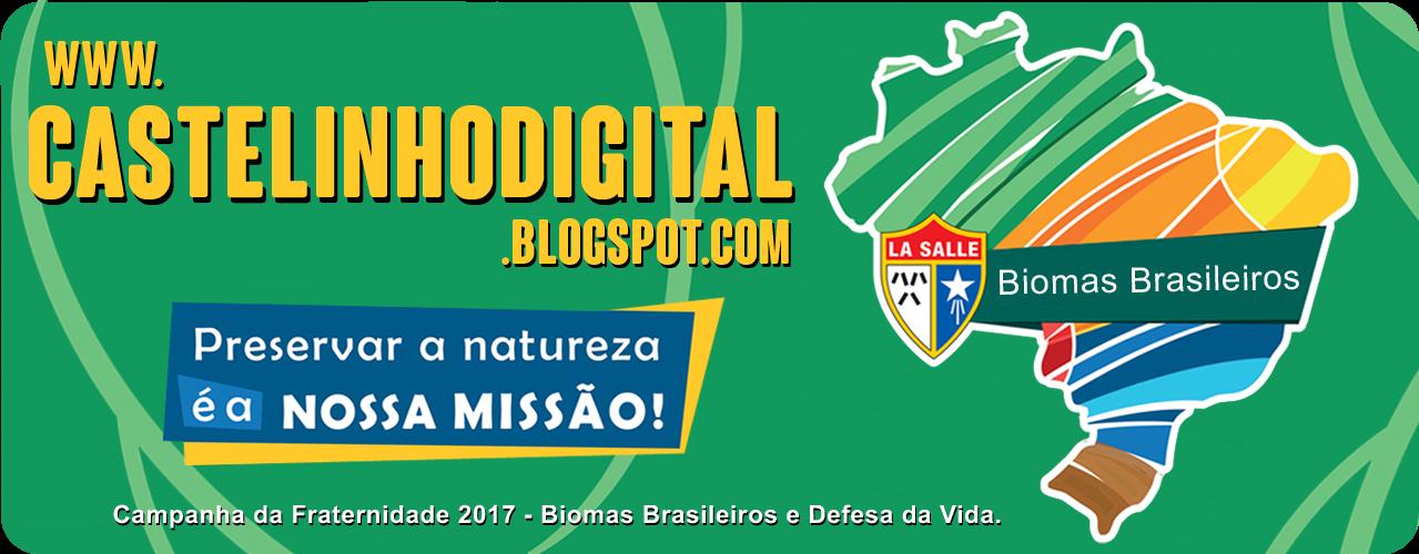 Castelinho digital.