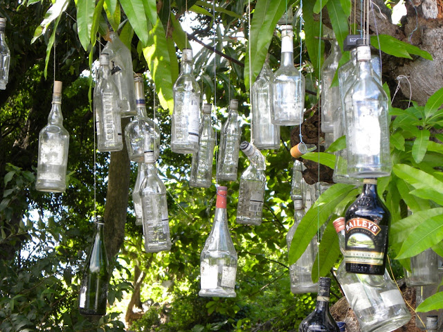 Bottles in a tree