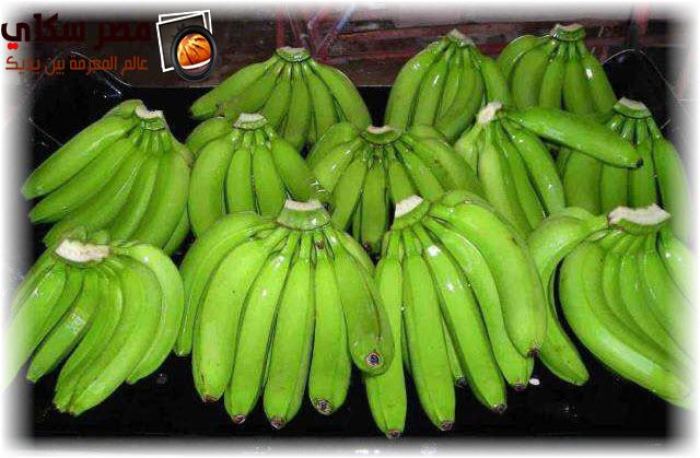 فوائد الموز الأخضر فى إنقاص الوزن