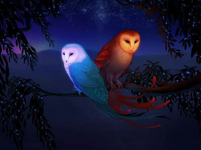 Dos búhos disfrutan la noche muy enamorados