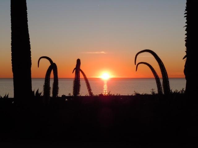 Beautiful Santa Monica sunset
