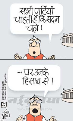 parliament, FDI in Retail, indian political cartoon