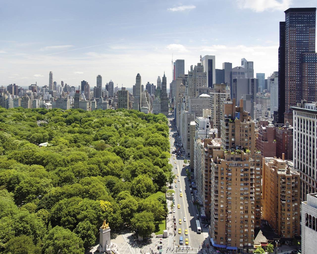 Maritza Craig Central Park