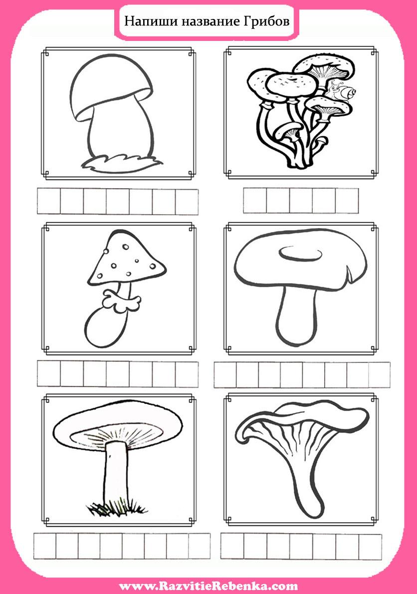 Раскраски грибы для детей - 4