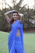Neelam Upadhyay Hot pics in Blue saree-thumbnail-21