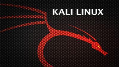 Kali Linux Complete Video Course 2015