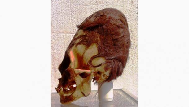 Cráneo Alargado de Paracas: Increíbles Resultados en los Análisis de ADN