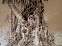 Original charcoal and white pastel pencil sketching of tree trunk by Manju Panchal