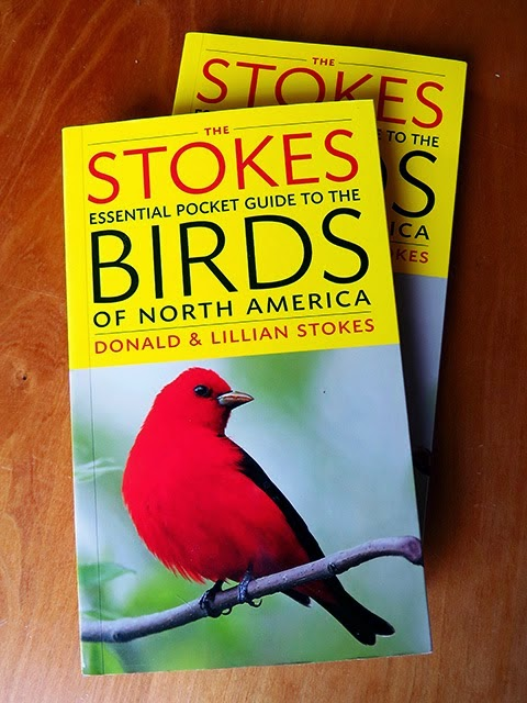 Stokes Essential Pocket Guide to Birds, Coming Oct. 14th, click on book to preorder